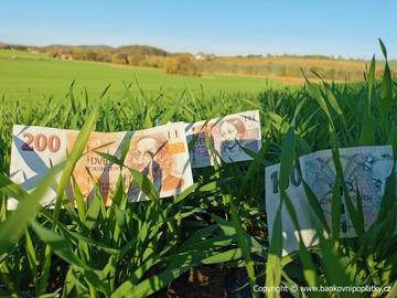 Zájem o úvěry v ČMSS do března rostl o pětinu, co bude dál?