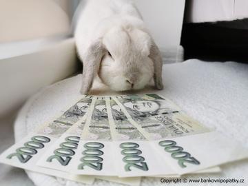 Češi utrácením drží ekonomiku